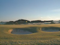 the 8th green