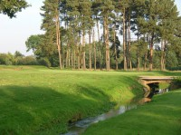 the short 15th, northamptonshire county golf club, ncgc, finest courses