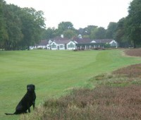 Dexter on 14th, clubhouse behind