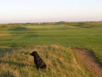 Royal Cinque Ports golf club, finest golf courses,