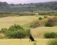 Tain golf club, finest golf courses