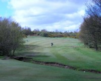 south moor golf club, alister mackenzie,