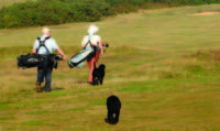 aldeburgh golf club, running golf,