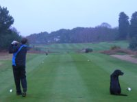 thorpeness golf club, running golf, dexter