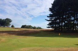 delamere forest golf club, herbert fowler, donald steel, fine running golf, golf course review